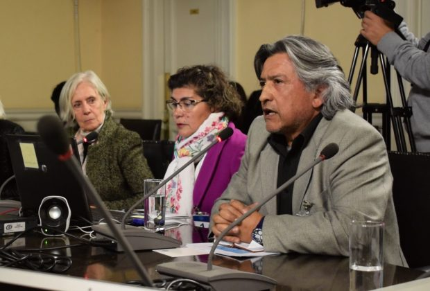 Dr. Rolando Danyau en la Comisión de Salud de la Cámara de Diputados